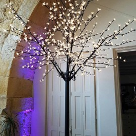 arbre lumineux alur and co